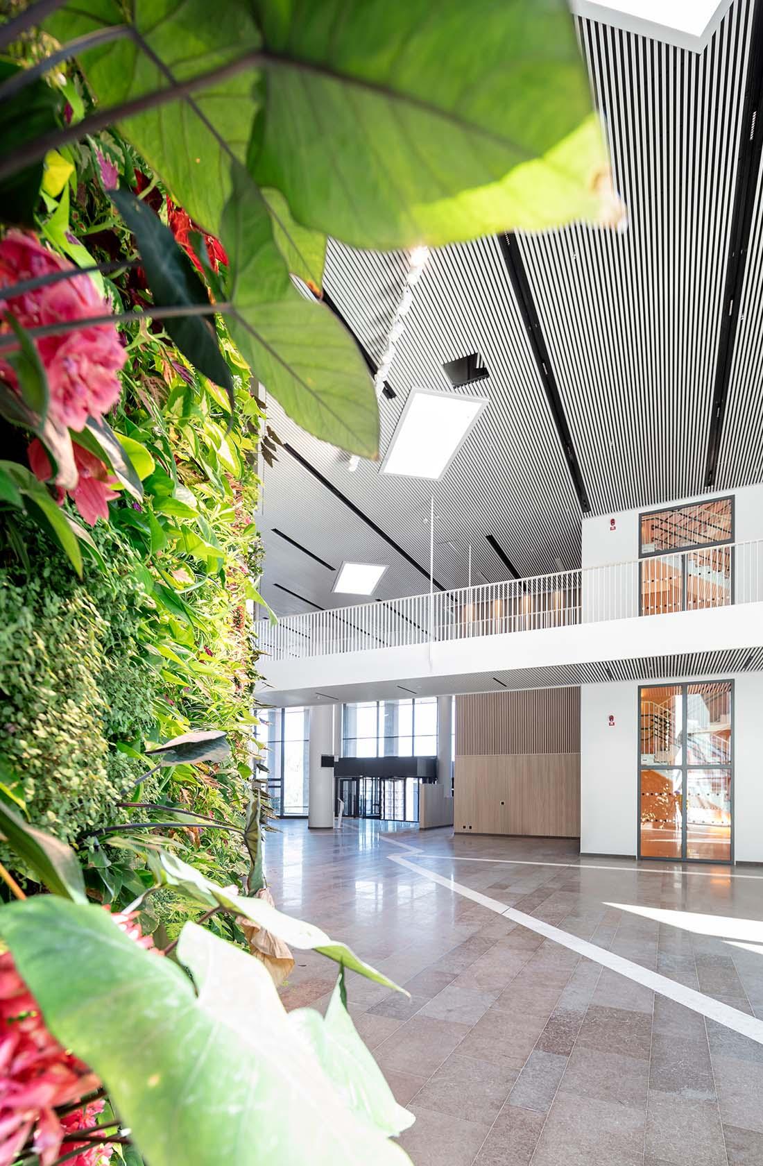 Växter på H-huset Örebro