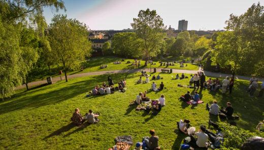 Människor på picknick i park