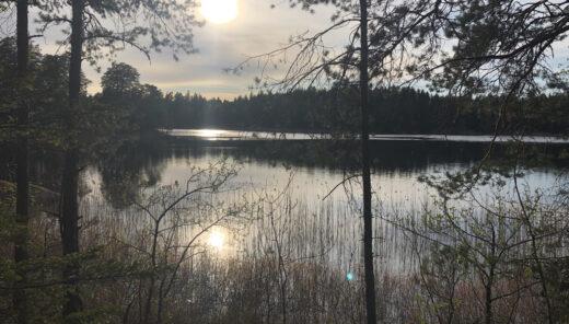 Svensk sjö