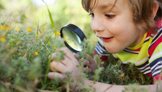 Liten gald pojke tittar på blommor i förstoringsglas