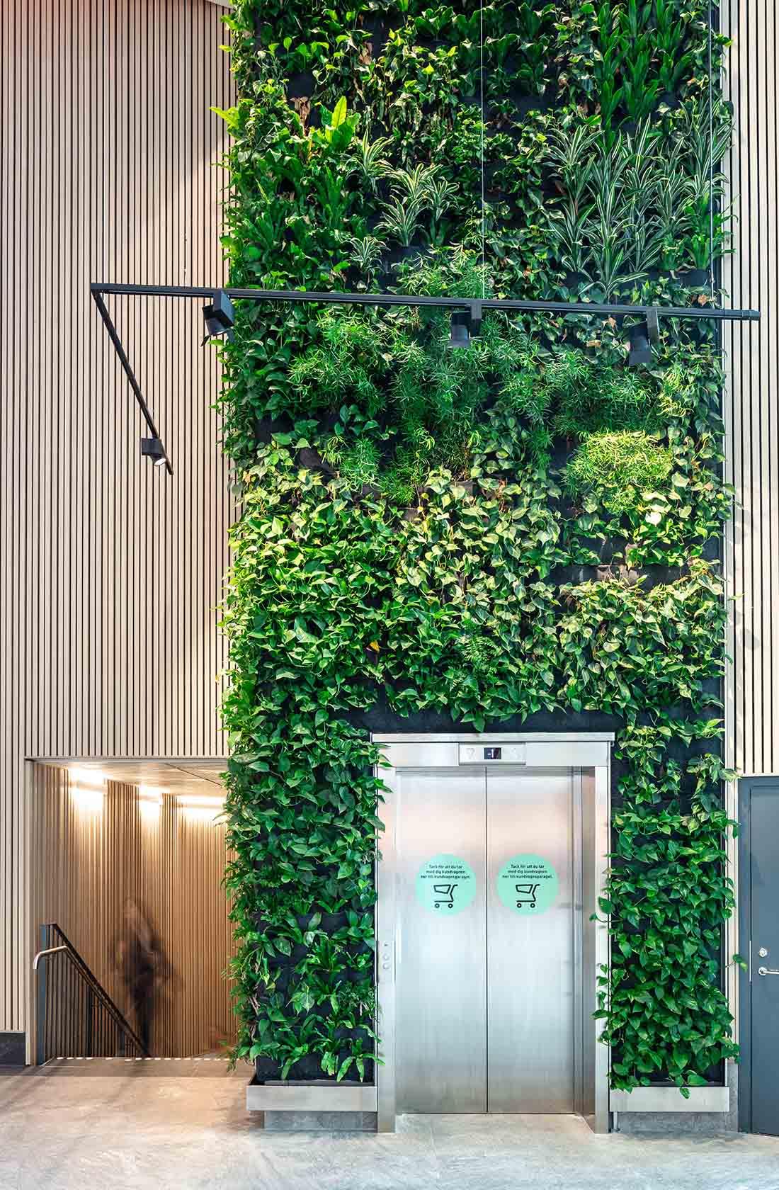 Grön växtvägg över hiss i Gränby centrum