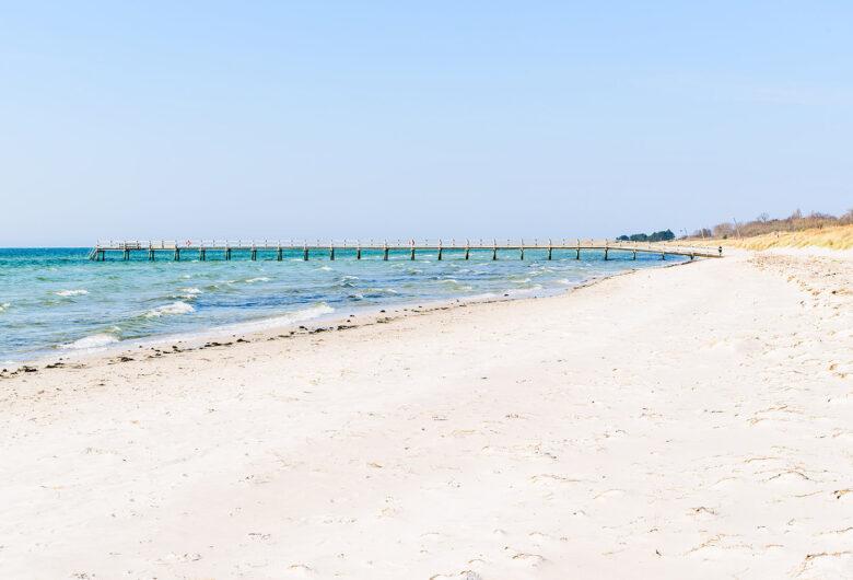 Hav och strand vid Falsterbonäset