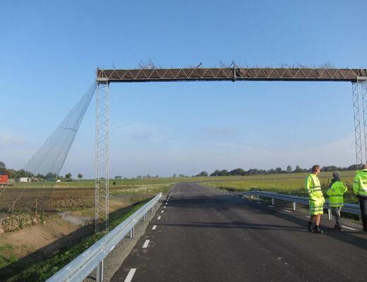 Bro i luften för hasselmöss