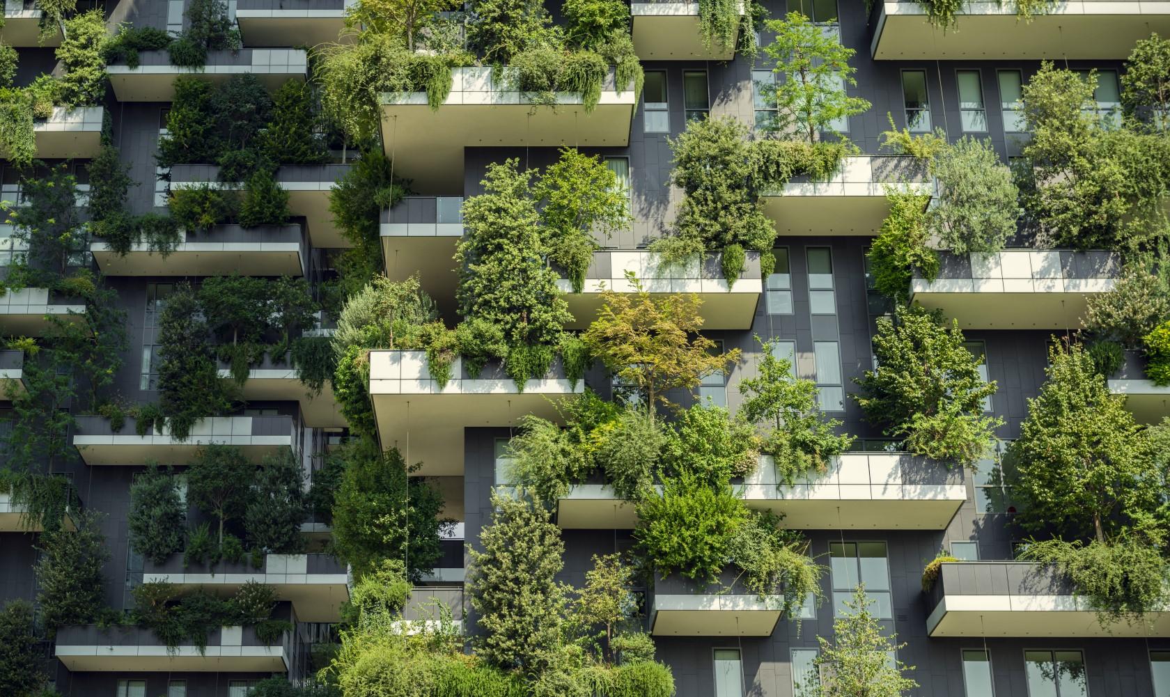 lägenhetsfasad med gröna växter