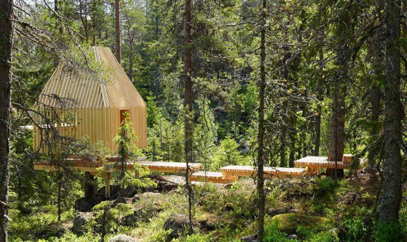 Vindskydd i trä i skogen