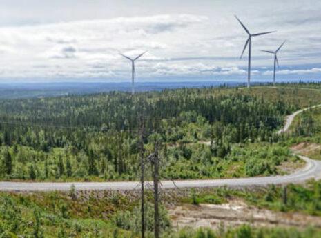 vindkraftverk i skogsområde